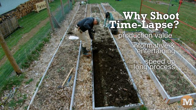 time lapse video production reasons why content creation gardening