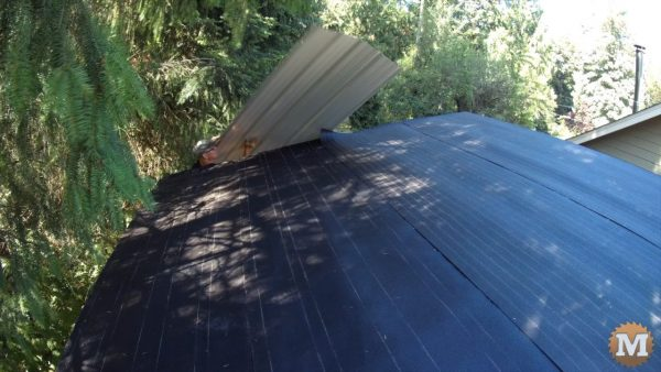The first panel is positioned square to the roof and a few screws run in - Shed Roof