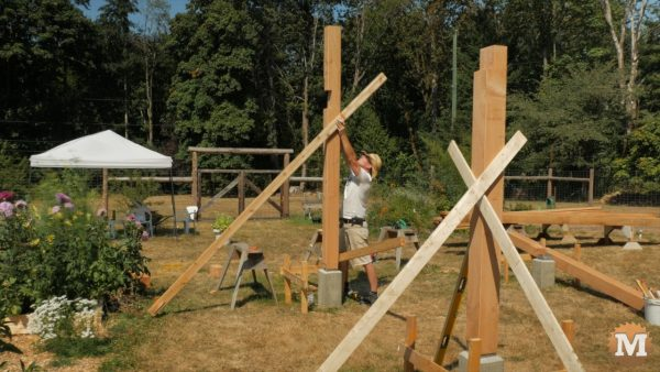 Standing up a front post and securing with temporary braces - Timber Frame Pavilion