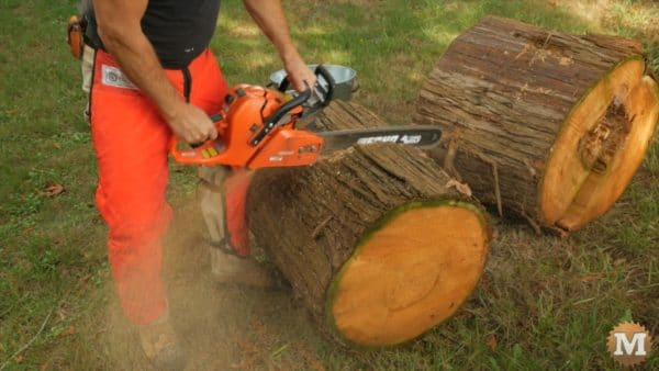 Cutting red cedar rounds to wood stove length