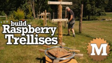 YouTube Thumbnail Build Raspberry Trellises - MAN about TOOLS